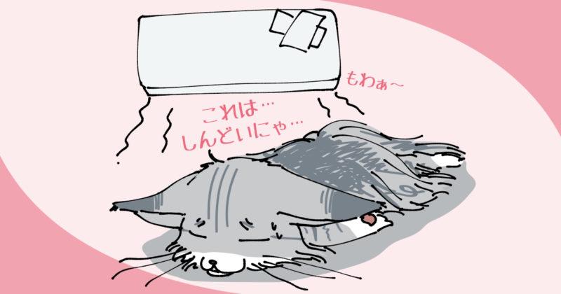 サーモオフって熱帯夜!さすがに熱中症になるかと思った。