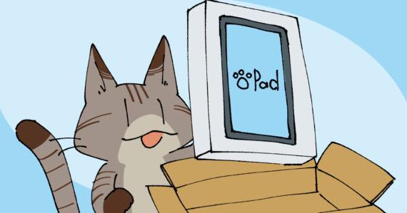 アクセサリ関係が届いたので、iPad開封の儀を行う。